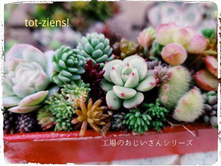 植物は含まれません。